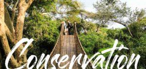 Zululand Conservation News