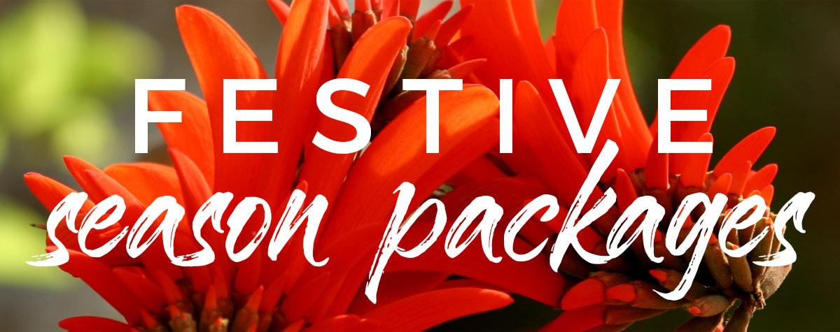 Festive Season Packages